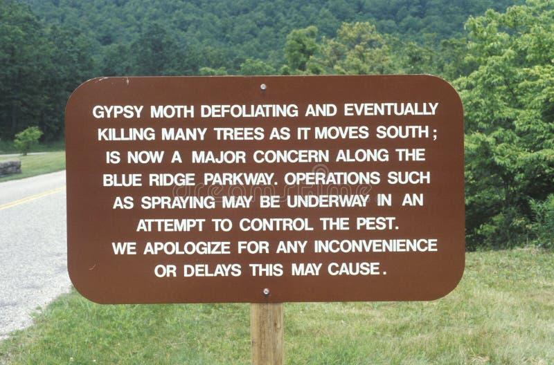 Il lepidottero zingaresco ambientale firma dentro la Virginia immagini stock libere da diritti