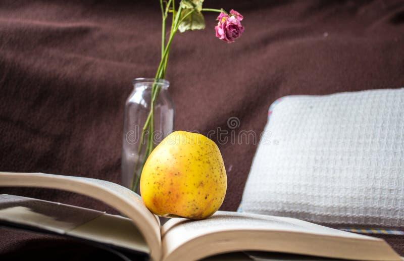 Il libro aperto con la mela ed è aumentato immagine stock