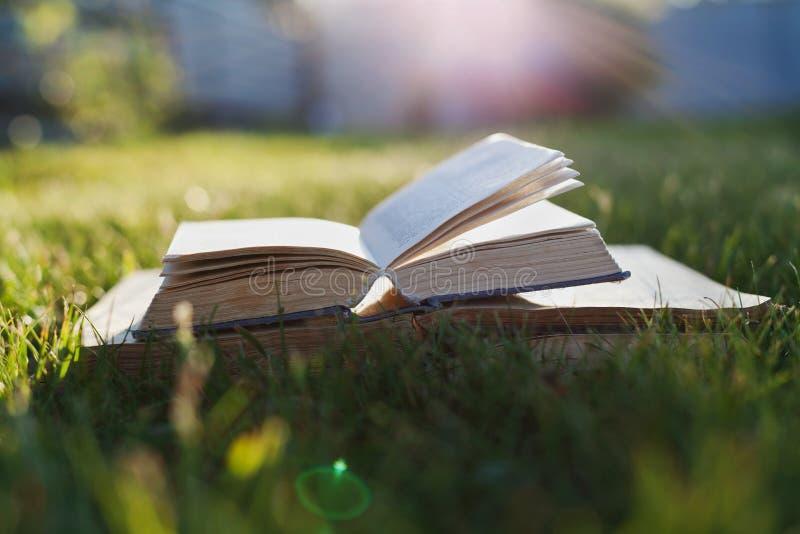 Il libro aperto su un'erba verde contro il bello tramonto si accende con il raggio del sole fotografia stock
