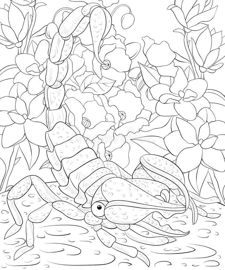 Il libro da colorare adulto, impagina uno scorpione sveglio sui precedenti floreali per rilassarsi Linea Art Style Illustration illustrazione vettoriale