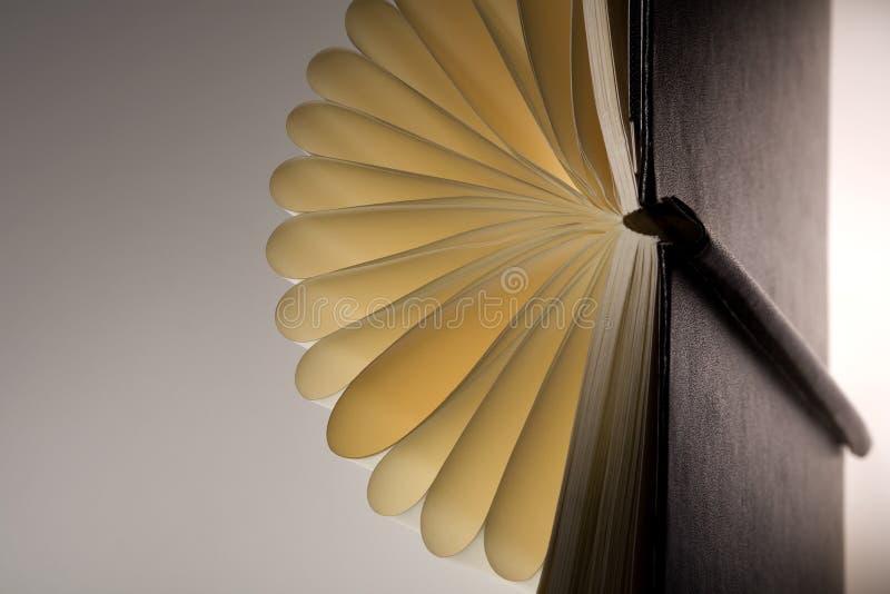 Il libro gradice un fiore immagini stock libere da diritti