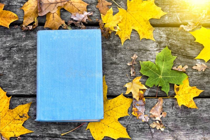 Il libro sulla vecchia tavola di legno, coperta in foglie di acero gialle Di nuovo al banco Concetto di formazione immagine stock libera da diritti