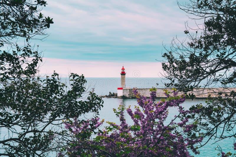 Il lighthous di vecchio porto Vieux di Bastia, Corsica immagini stock