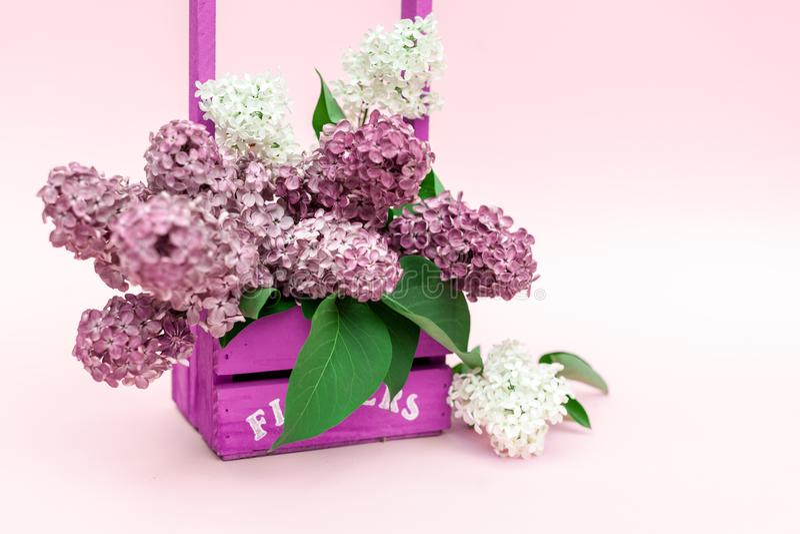 Il lillà fiorisce il mazzo in un canestro di legno viola sopra fondo rosa Bella progettazione lilla viola del confine di Pasqua d immagini stock