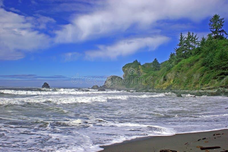 Il litorale robusto della California. fotografia stock