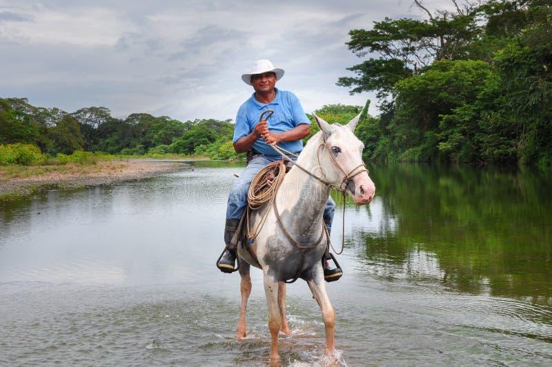 Il locale ha montato su un cavallo in penisola di Nicoya, Costa Rica immagini stock