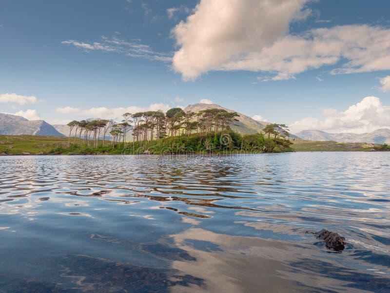 Il Lough di Derryclare, dodici pini abbellisce, il giorno caldo soleggiato, il cielo nuvoloso, la contea Galway Irlanda Destinazi immagine stock