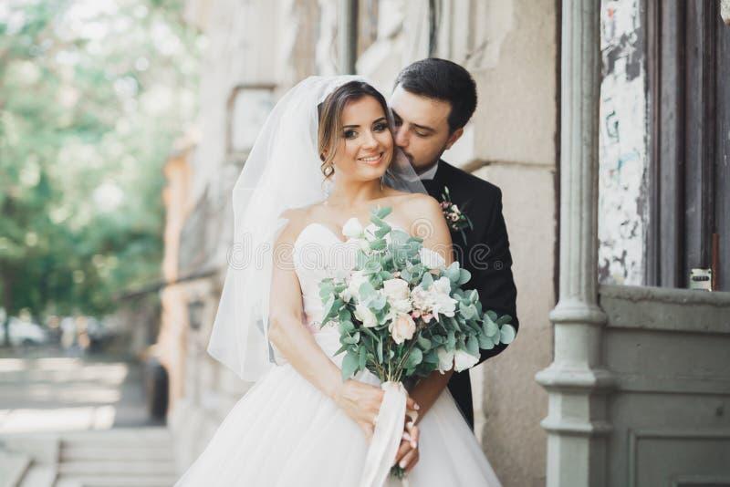 Il lusso ha sposato le coppie, la sposa e lo sposo di nozze posanti nella vecchia città immagini stock