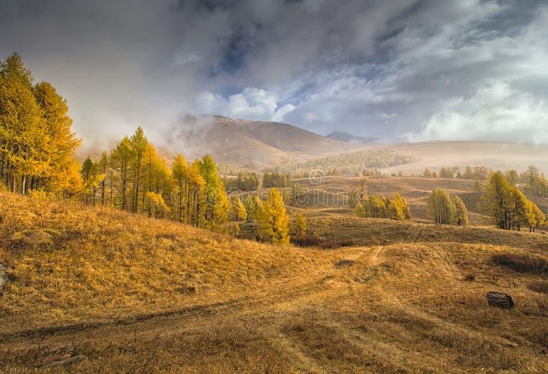 Il maltempo nelle montagne con i fiocchi di neve che volano vicino fotografia stock libera da diritti
