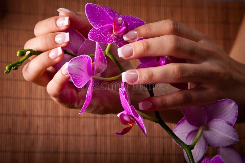 Il manicure francese ed il pedicure della donna fotografia stock