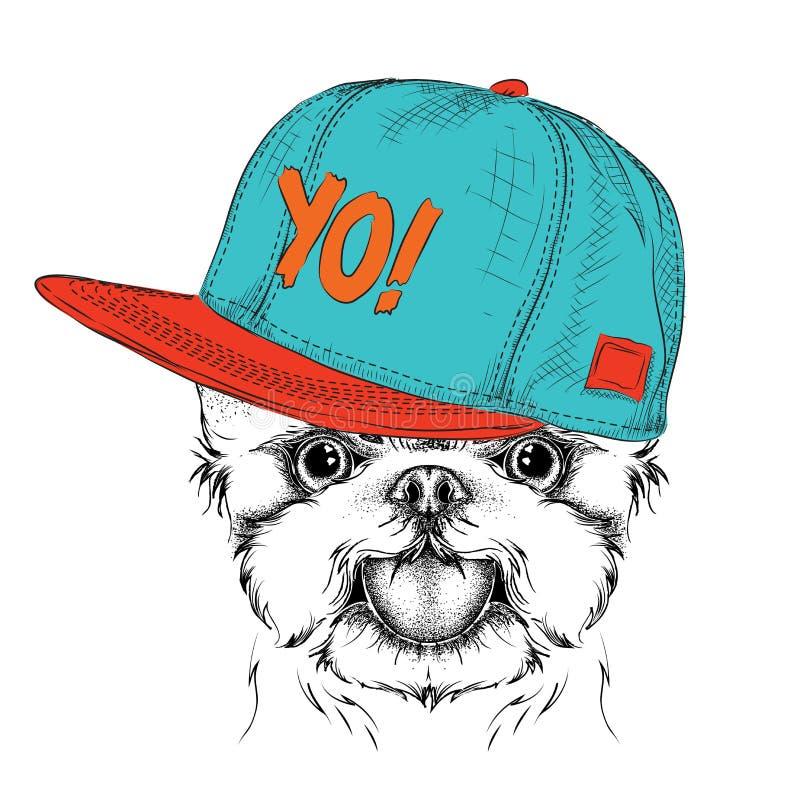 Il manifesto con il ritratto del cane di immagine in cappello hip-hop Yorkshire terrier Illustrazione di vettore illustrazione di stock