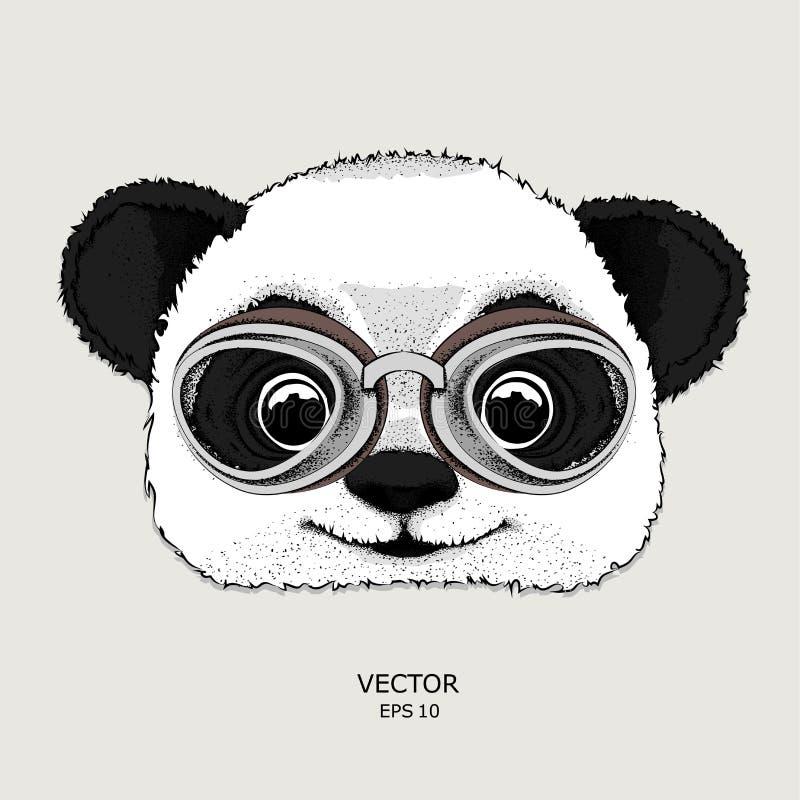 Il manifesto con il ritratto del panda che indossa i vetri del motociclo Illustrazione di vettore illustrazione vettoriale