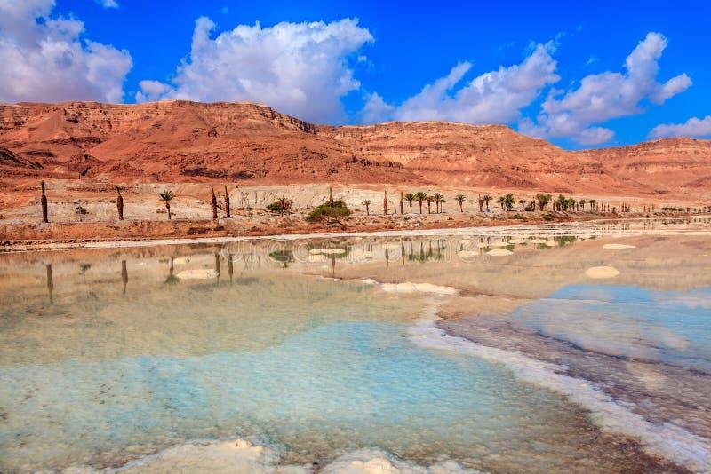 Il mar Morto alla costa di Israele fotografie stock libere da diritti
