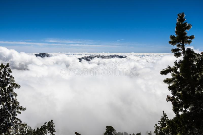Il mare delle nuvole e visibile della cresta della montagna di a mala pena incorniciato da gelo ha coperto gli alberi sempreverdi immagini stock libere da diritti