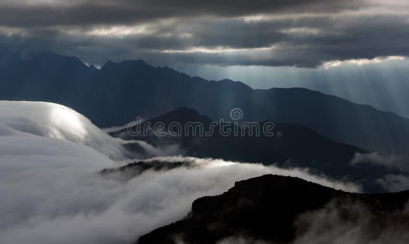 Il mare delle nuvole sul bestiame appoggia la montagna in Sichuan occidentale, Cina immagine stock