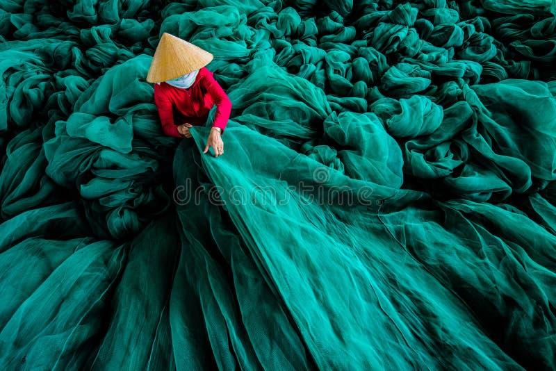 Il mare di verde fotografia stock libera da diritti