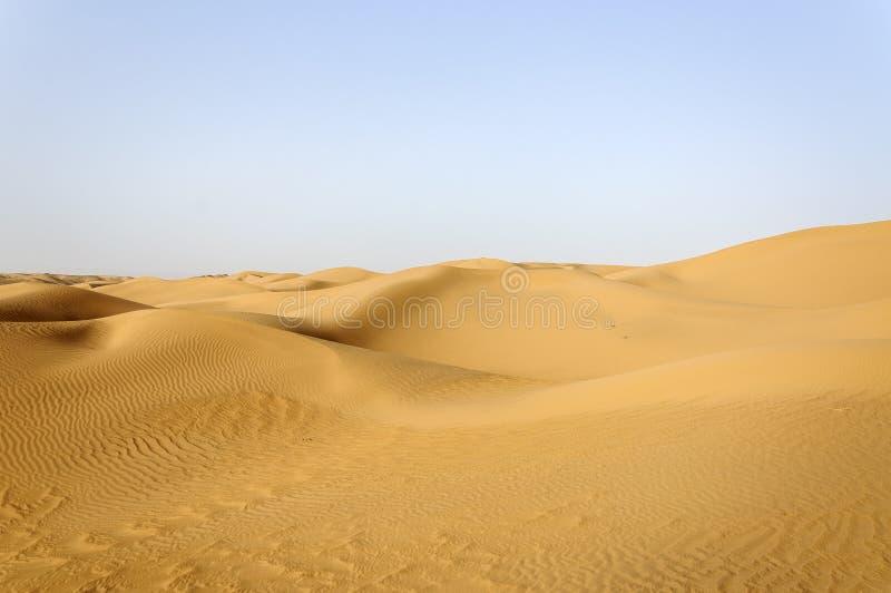 Il Marocco, dune di sabbia fotografia stock libera da diritti