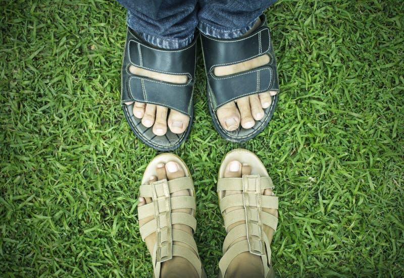Il maschio e la femmina paga su erba verde immagine stock libera da diritti
