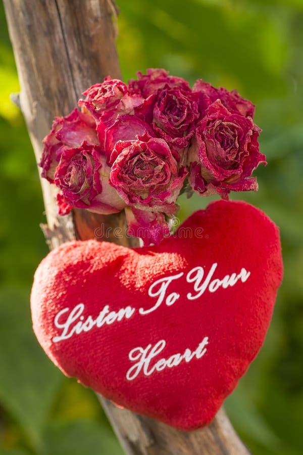 Il mazzo delle rose secche ed il cuore di corallo della peluche con testo ascoltano il vostro cuore fotografie stock libere da diritti