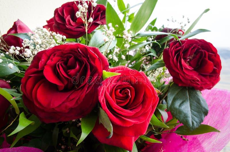 Il mazzo delle rose si chiude in su Priorità bassa vaga Fuoco selettivo Fondo floreale della cartolina d'auguri o del modello Maz immagini stock