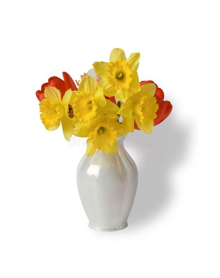 Il mazzo di bei tulipani e narcissuses della molla in un vaso è isolato su bianco fotografia stock