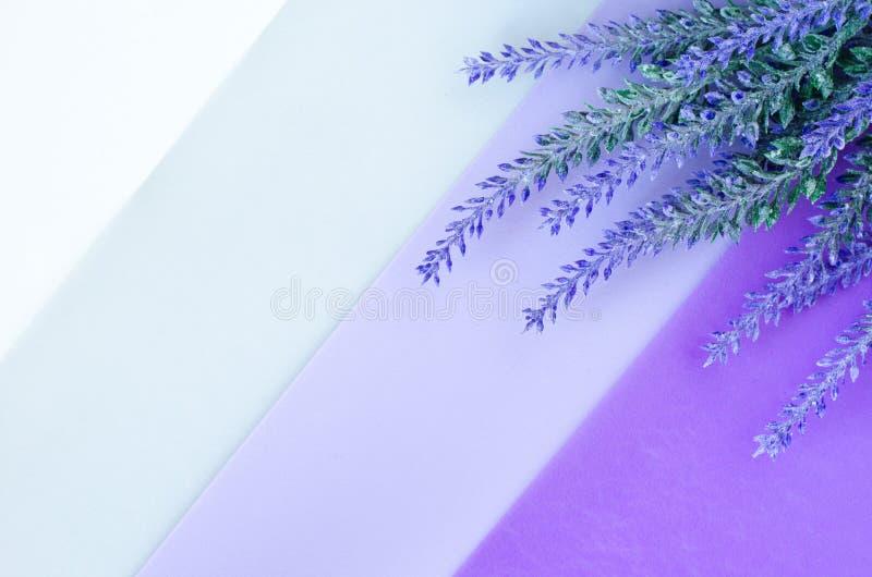 Il mazzo di lavanda mette sul fondo viola grigio bianco a strisce immagini stock