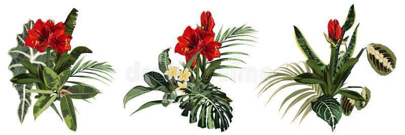 Il mazzo tropicale dell'estate verde intenso ha messo, elemento di progettazione con le foglie di palma esotiche, pianta tropical illustrazione di stock