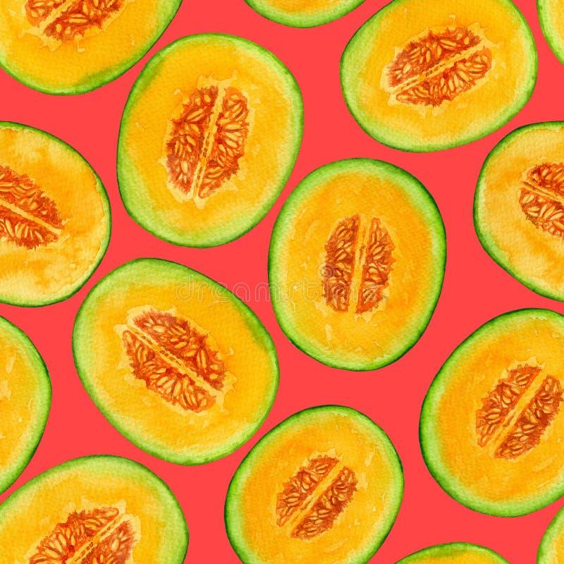Il melone affetta il modello dell'acquerello fotografie stock libere da diritti