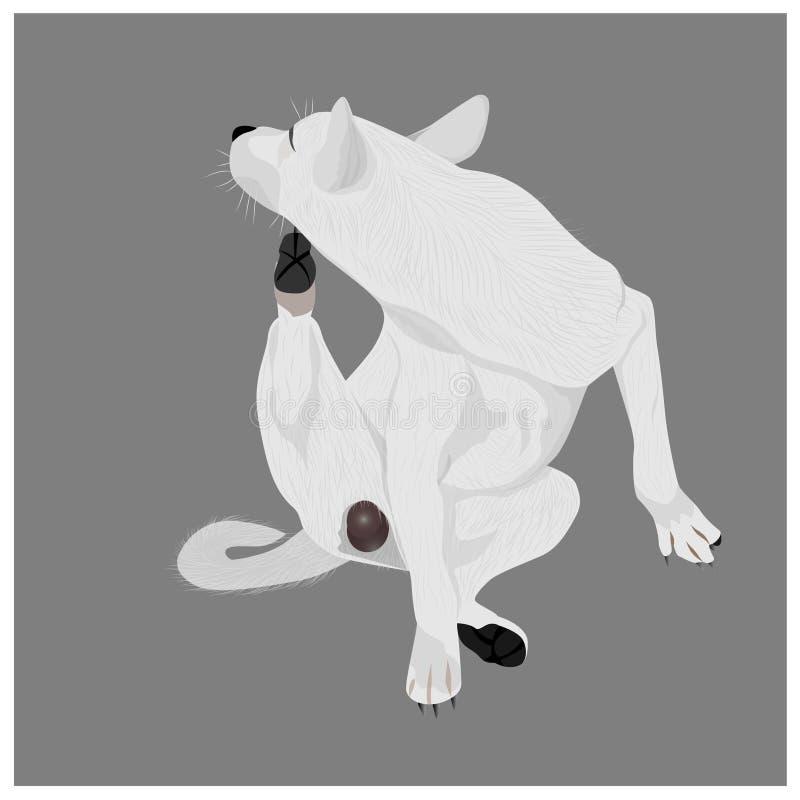 Il mento del graffio del cane illustrazione di stock