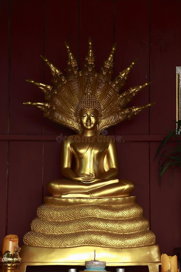 Il merito di Buddha fotografia stock libera da diritti