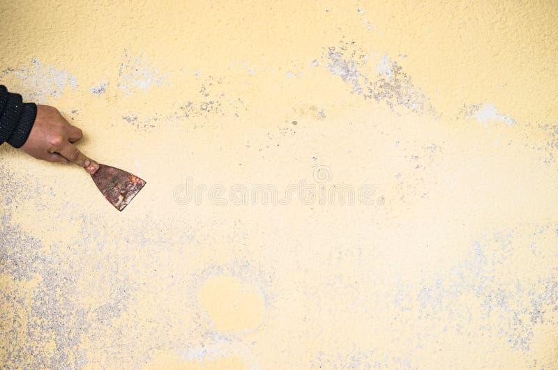 Il miglioramento domestico, mano maschio sta graffiando il vecchio gesso dalla parete fotografia stock