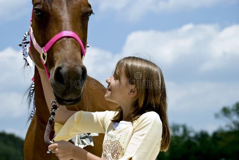 Il mio cavallo immagine stock