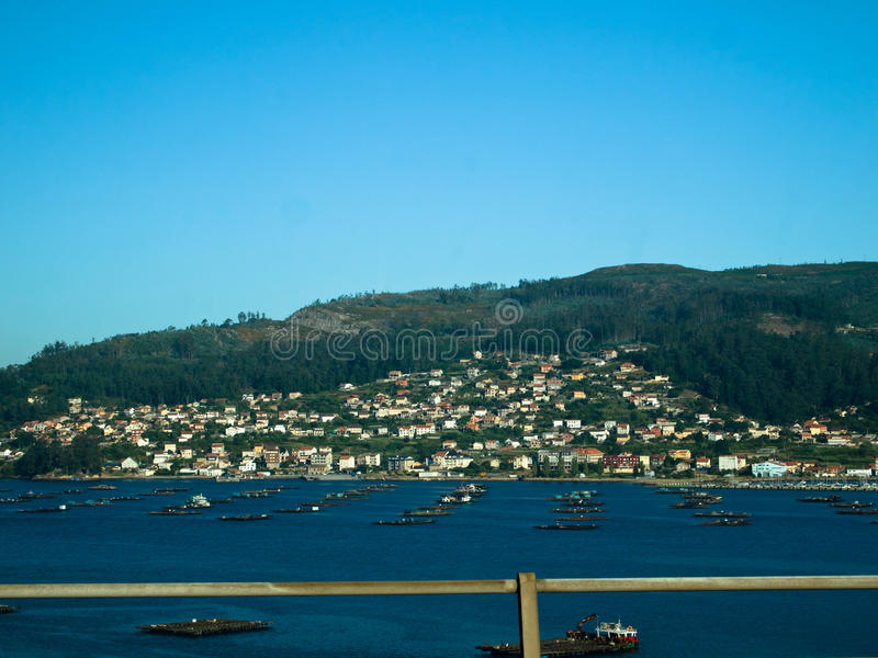Il mitilo barges dentro Domaio in Ria de Vigo fotografie stock