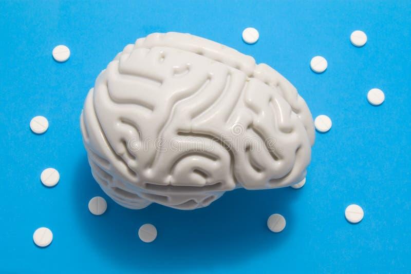 il modello anatomico 3D del cervello è su fondo blu circondato dalle pillole bianche come pois dell'ornamento Concetto medico dal fotografia stock