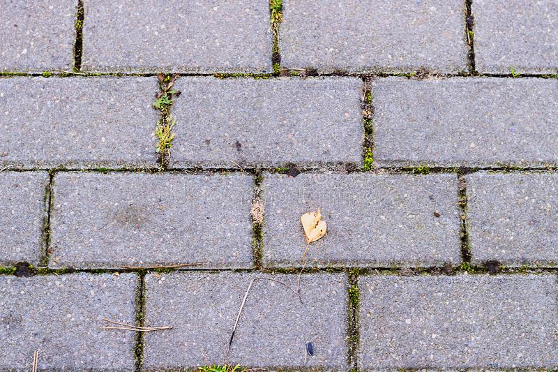 Il modello del blocchetto del mattone sul passaggio pedonale, blocchetto del triangolo è differenza, zigzag blocca la struttura fotografia stock