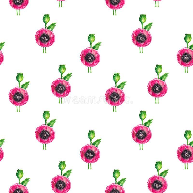 Il modello dell'illustrazione dell'acquerello senza cuciture dei papaveri di fioritura rossi stacca l'insieme dal gambo floreale  royalty illustrazione gratis