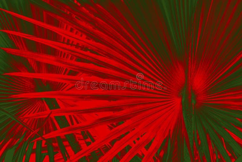 Il modello drammatico in palmetto lascia con rosso di colori di Natale immagini stock libere da diritti