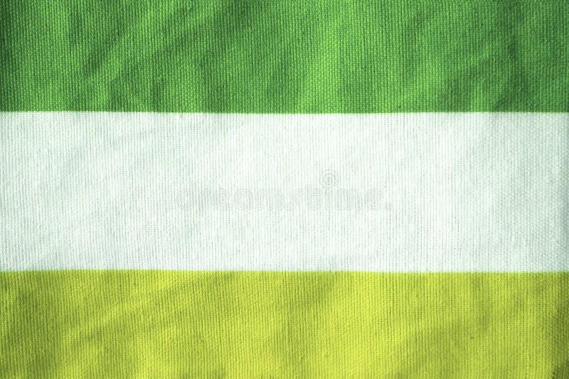 Il modello la superficie del tessuto è contrapposizione verde e bianca immagini stock libere da diritti