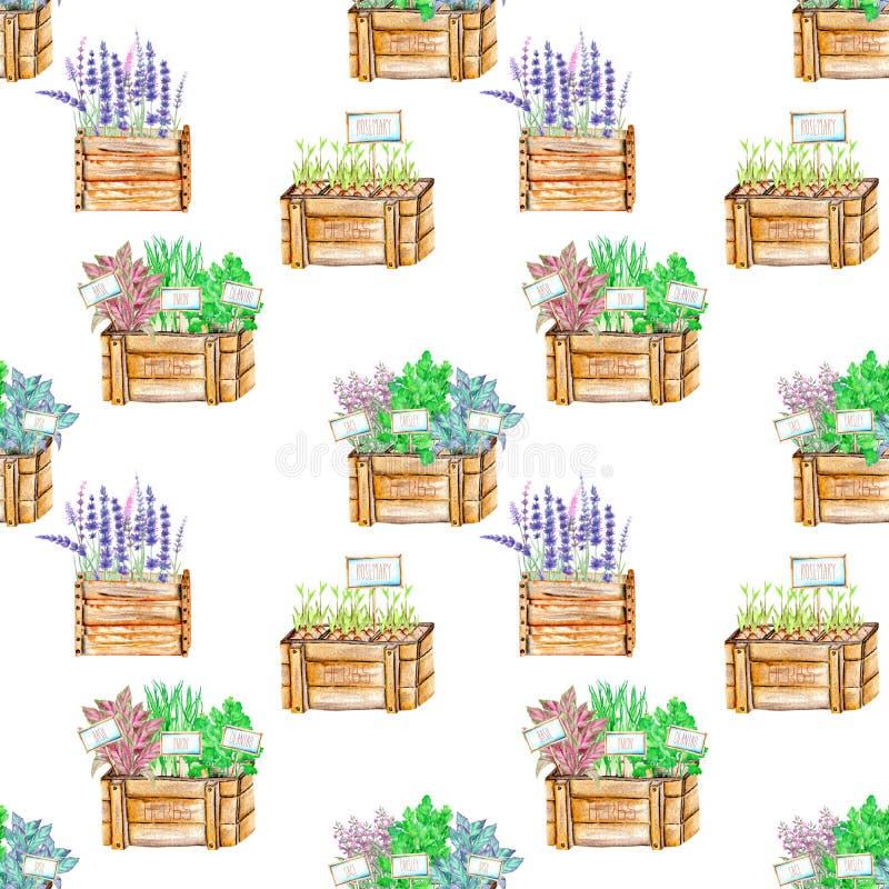 Il modello senza cuciture con l'acquerello aromatizza le erbe piccanti in scatole di legno royalty illustrazione gratis