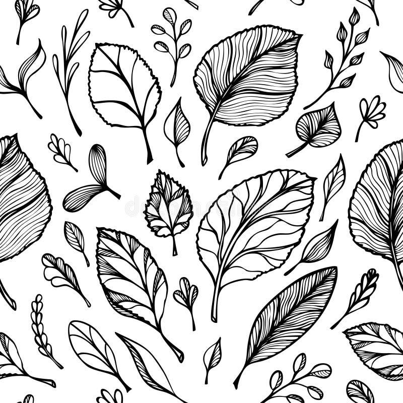 Il modello senza cuciture dalla struttura di tiraggio della mano delle foglie annerisce su bianco nella linea arte per l'insegna  illustrazione di stock