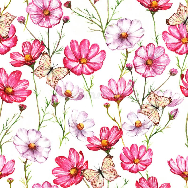 Il modello senza cuciture dell'acquerello disegnato a mano con il kosmea rosa e bianco fiorisce con le farfalle illustrazione di stock