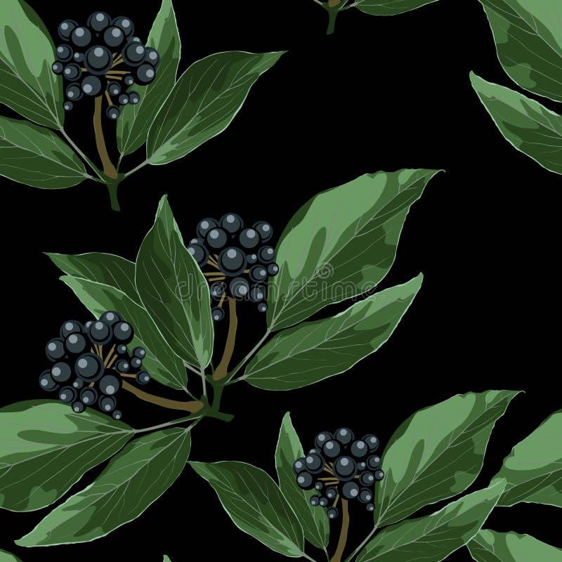 Il modello senza cuciture di vettore con le bacche blu si ramifica con le foglie illustrazione di stock