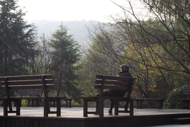 Il momento di solitudine fra la bella natura può incitarvi a rinfrescare e ritenendo meglio fotografia stock libera da diritti
