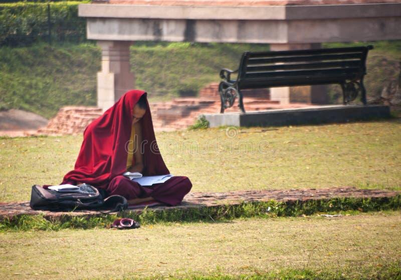 Il monaco buddista studia alle rovine vicino al Dhamekh Stupa immagini stock