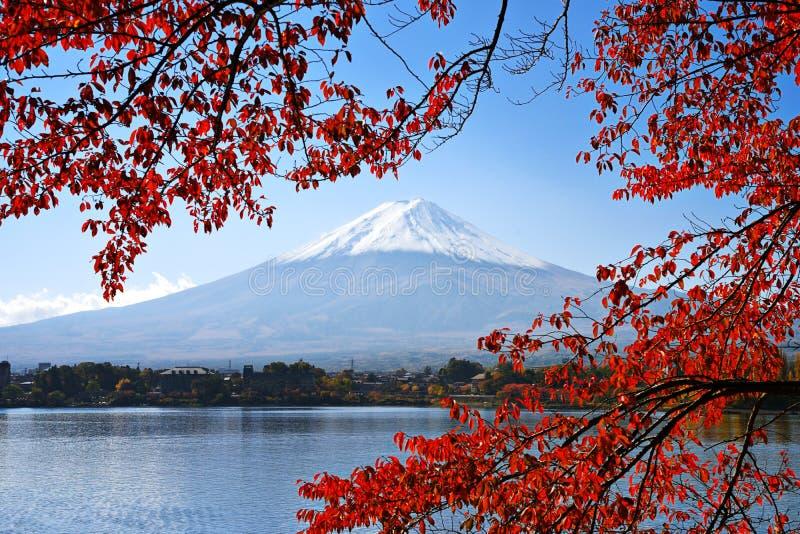Il monte Fuji in autunno immagine stock libera da diritti