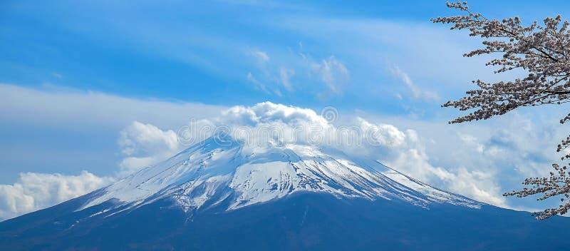 Il monte Fuji con neve ha ricoperto, cielo blu e bello albero rosa o di Cherry Blossom di Sakura del fiore nella stagione primave immagini stock libere da diritti