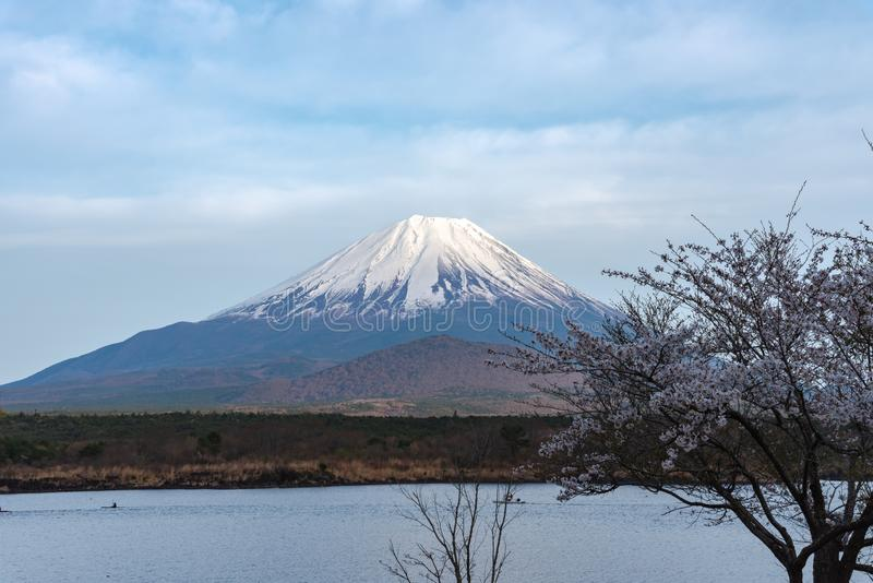 Il monte Fuji o Mt Fuji, il patrimonio mondiale, vista in Shoji del lago (Shojiko) Regione del lago fuji cinque immagine stock libera da diritti