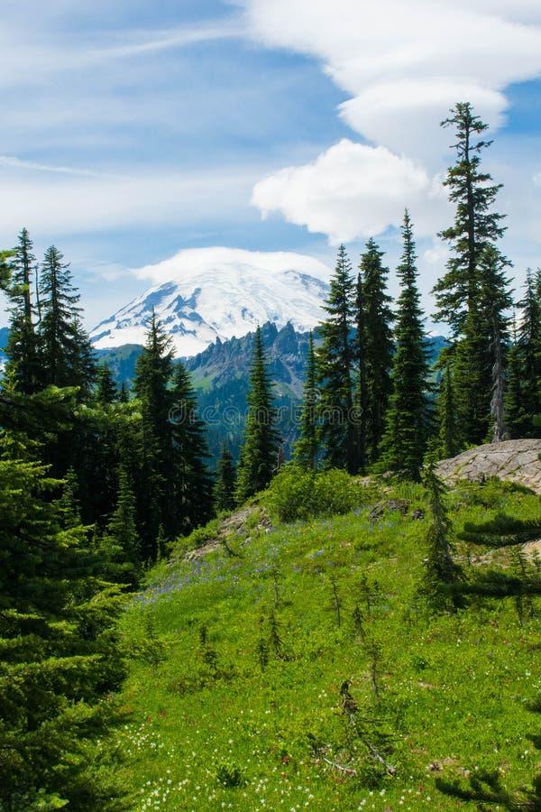 Il monte Rainier sotto le nuvole gonfie immagini stock libere da diritti