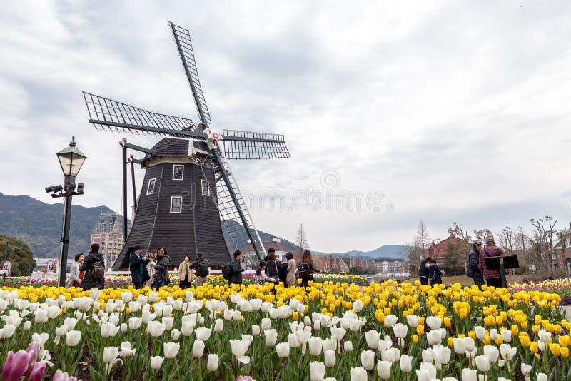 Il mulino a vento al parco a tema del Huis ten Bosch con molti tulipani di colore fa il giardinaggio a Sasebo, Nagasaki, Giappone fotografia stock