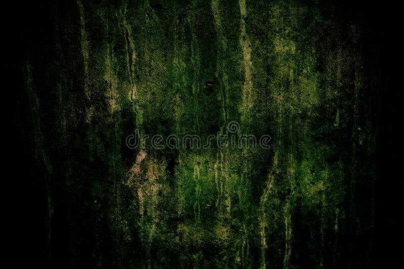 Il muro di cemento scuro con muschio verde, le imperfezioni ed il cemento naturale strutturano come struttura del fondo con vigne fotografie stock